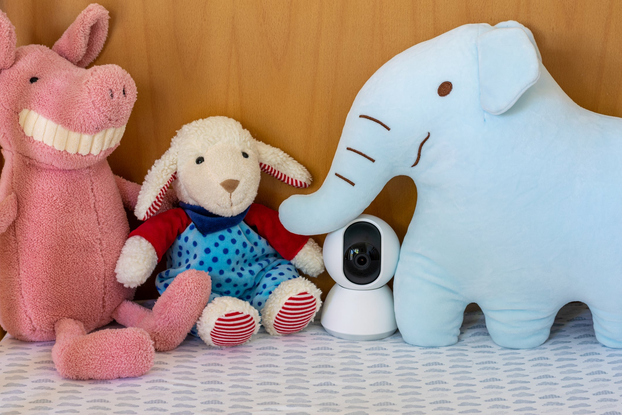 The 8 Best Nanny Cams image