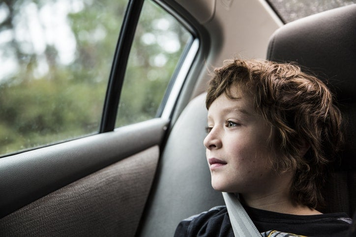Hot Car Safety for Children and Pets