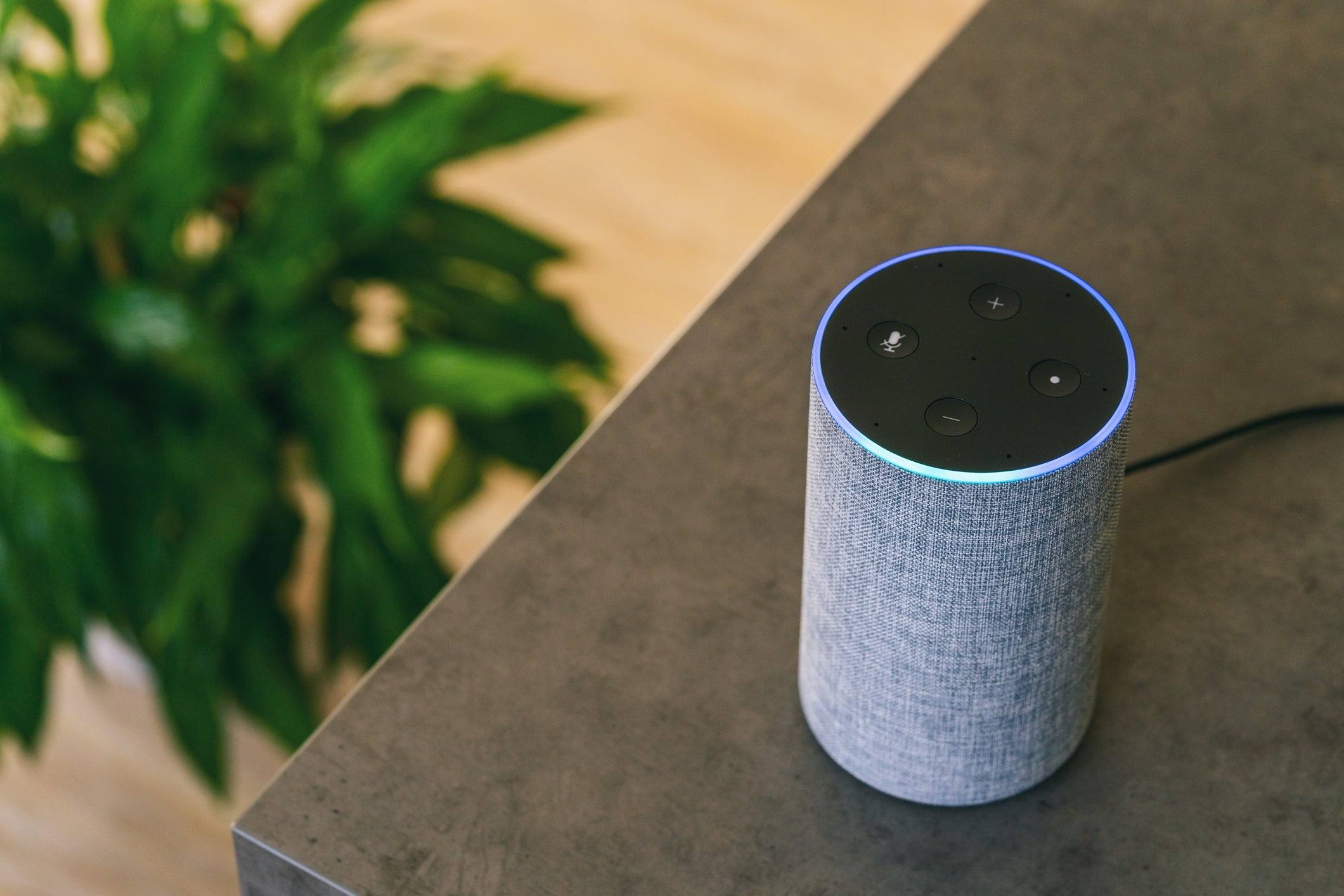 Everything You Need to Know about Alexa's New Security Flaw
