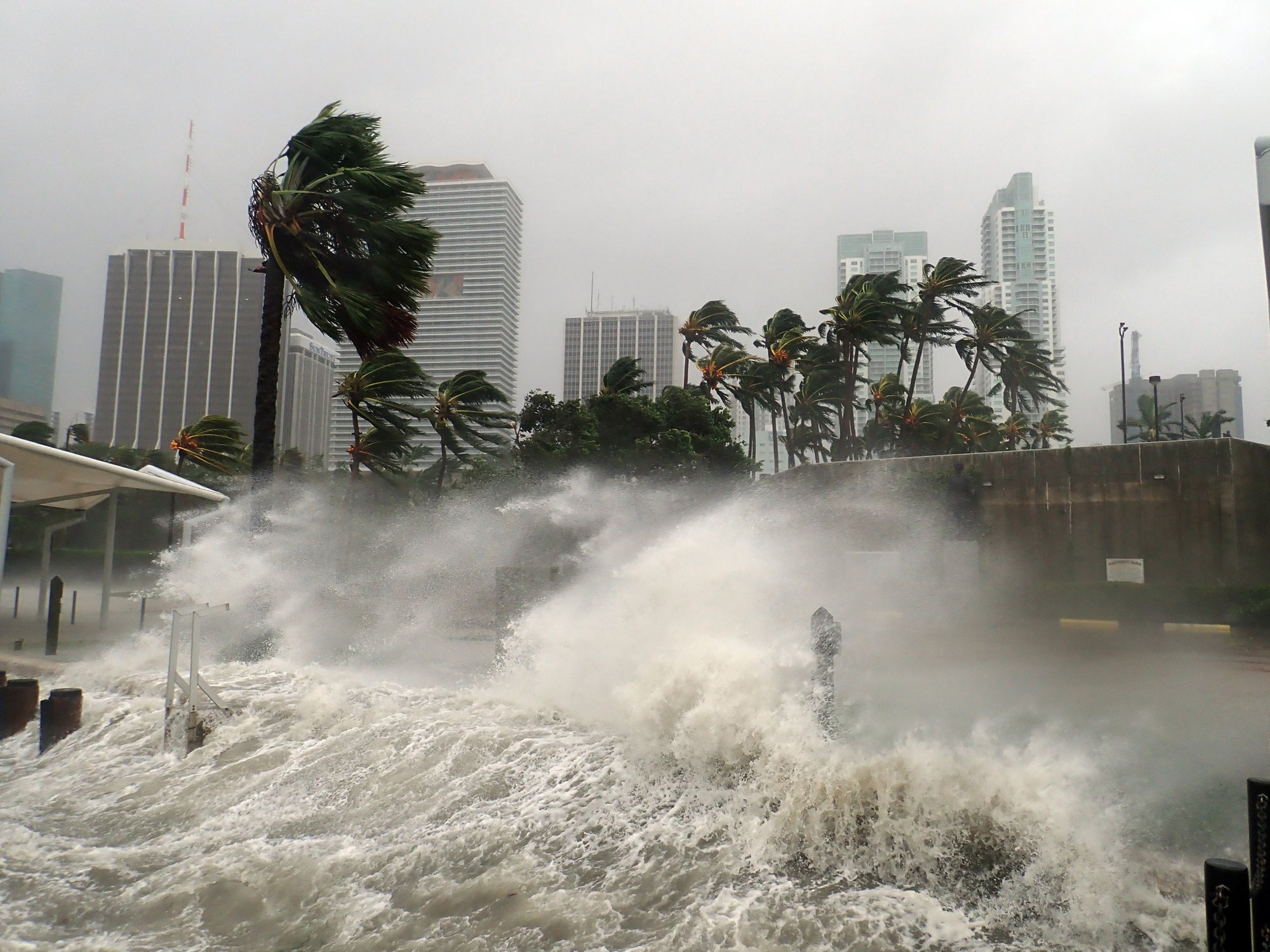Caught in a Flash Flood? Here's What You Should Do