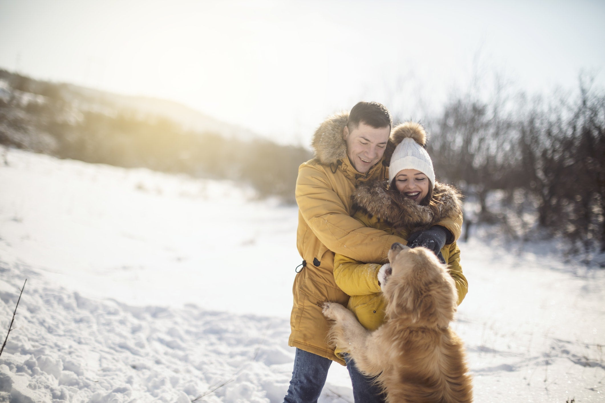 Keep Your Pets Warm With These 8 Winter Safety Tips