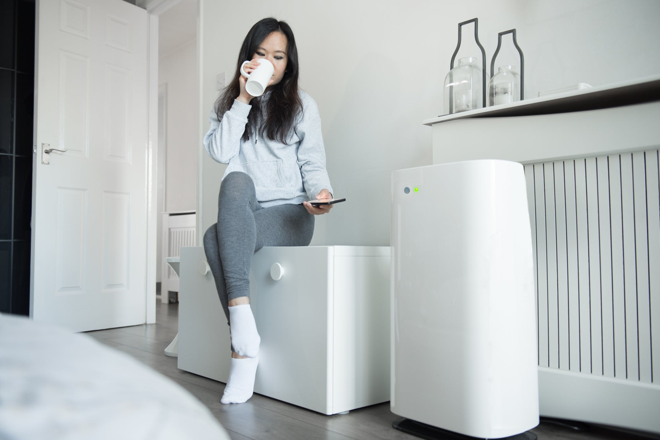 Best Air Purifiers for 2021 image